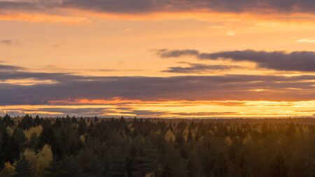 Beautiful orange sunset sky with clouds over autumn forest on horizon