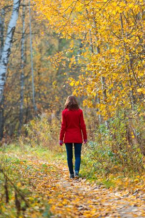 Woman walks alone in autumn forest. Rear view