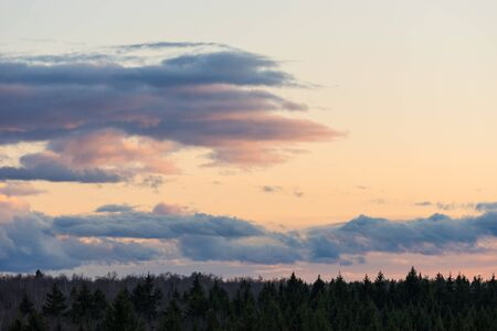 Beautiful sunset clouds on sky over forest horizon