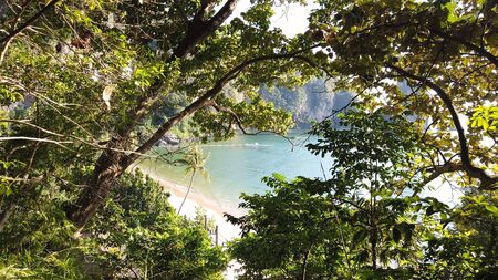 Beautiful picturesque view on Pai Plong Centara beach through tropical trees and greenery in Krabi in Thailand
