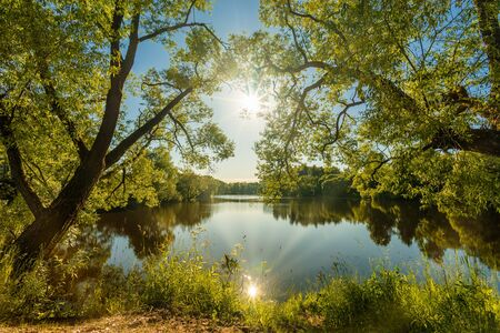 Beautiful wide-angle summer sunny landscape of russian nature with green trees and pond with sunlight reflected in water surface