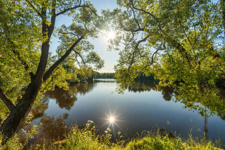 Beautiful wide-angle summer sunny landscape of russian nature with green trees and pond with sunlight