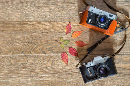 Old retro style film photo cameras in leather cases on wooden background. Autumn Composition with dry colorful leaves. Flatlay view from above with space for copy and text
