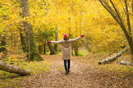A woman walks in a beautiful autumn yellow forest and enjoys a walk