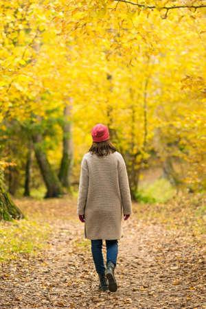 A woman walks alone in a beautiful autumn yellow forest 版權商用圖片