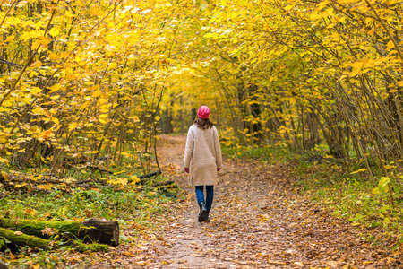 A one young woman walks in a beautiful autumnal yellow forest in fall season 版權商用圖片
