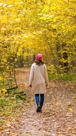 A one female walks in a beautiful autumnal yellow forest in fall season. Rear view 版權商用圖片