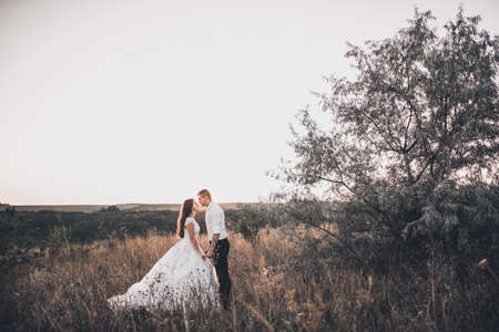 bride and groom in wedding white dress walking on the meadow in summer at sunset