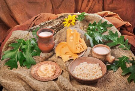 dairy organic foods such as cheese, cottage cheese, butter, milk photo