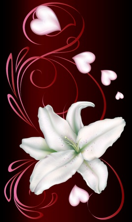 white lily and heart on a dark background decorated with a pattern of red lines