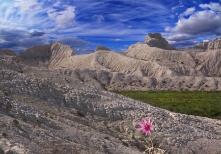 Ustyurt; 山中の白いゲレンデカザフスタンのプラトー北東部 写真素材