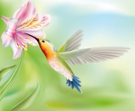 花のベクトル図内ハチドリ鳥が飛ぶ