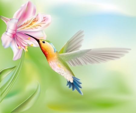 hummingbird bird flies inside the flower  vector illustration Vector