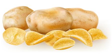 raw potato: potato chips are fresh potato tubers near  vector illustration Illustration