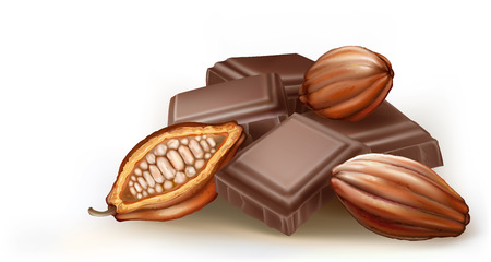 cocoa fruit and chunks of chocolate on a white background