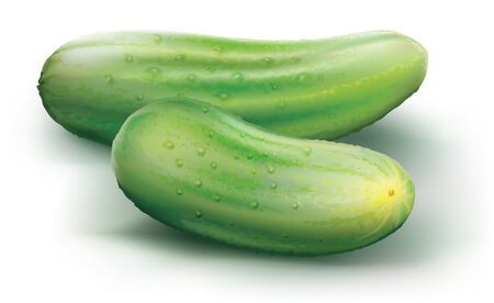 cucumbers: cucumbers on a white background. vector illustration Illustration