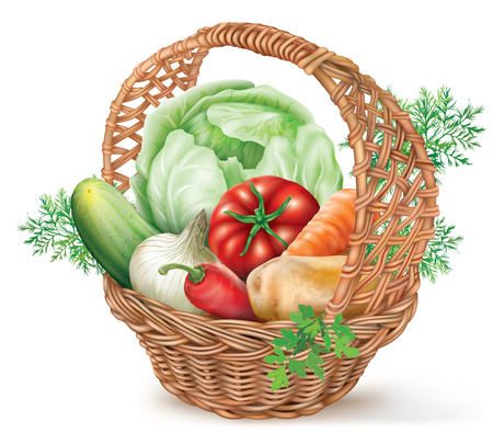 tuber: Different vegetables in brown wicker basket. vector illustration