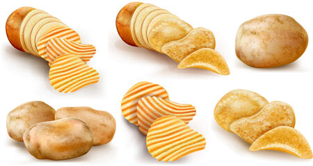 raw potato: potatoes and potato chips and cut potato tubers on a white background. vector illustration