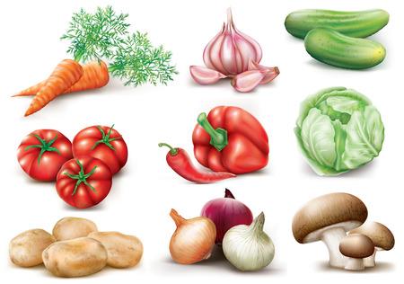 白い背景の上のコレクションの野菜。ベクトル イラスト