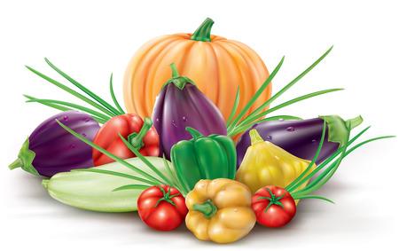 aubergine: Group of different colorful fruits gourd vegetables: squash pumpkin zucchini eggplant aubergine Illustration