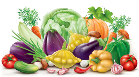 aubergine: Group of different colorful vegetables on the white background. Vector illustration