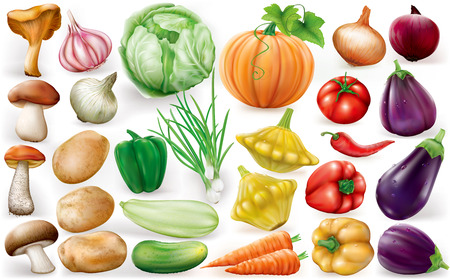 Set of vegetable on white background. Vector illustrations Çizim