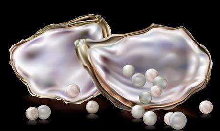 Conchas de ostras con perlas sobre un fondo negro Foto de archivo - 42843636