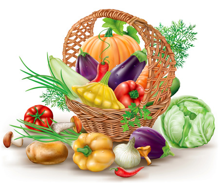 Different vegetables in brown wicker basket. vector illustration