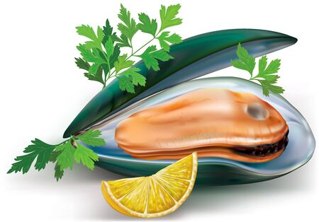 mollusc: mussels on a open shells with lemon and parsley