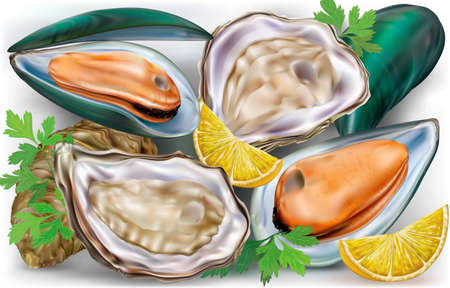 shellfish: Fresh opened oysters and mussels on a open shells with lemon and parsley Illustration