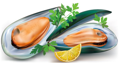 mussels on a open shells with lemon and parsley
