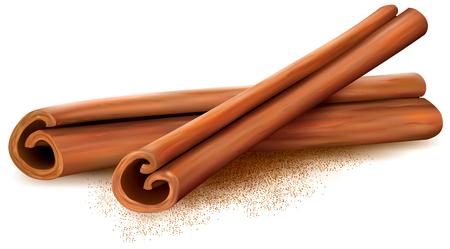 stick of cinnamon: Cinnamon sticks on white background. Vector illustrtion