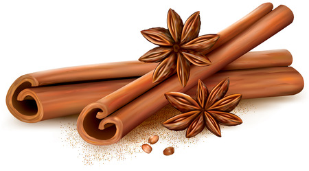 Cinnamon sticks and anise stars on white background. Vector illustrtion Ilustração