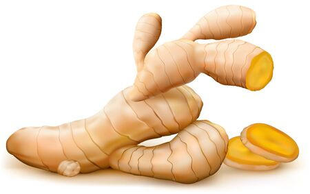 Ginger root and cut root on white background