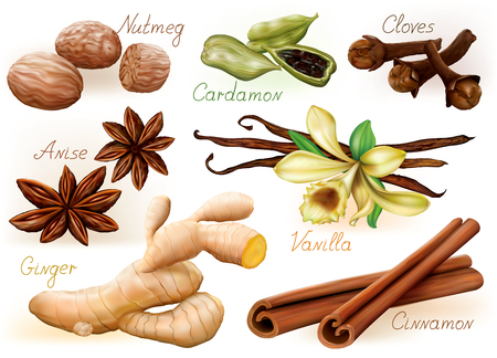 flavoring: Different aromatic spices set on white background. Illustration