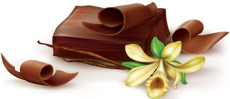flavours: Chocolate block and curl with vanilla flower on white background. illustration Illustration