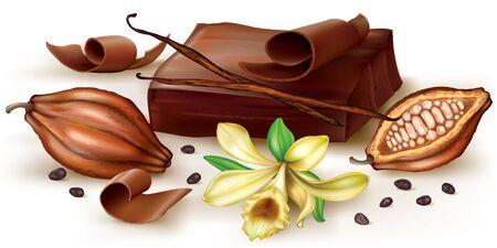vainilla flor: bloque de chocolate y vainilla enrollamiento con la flor y la fruta de cacao. ilustración