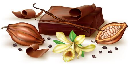 cocoa fruit: Chocolate block and curl with vanilla flower and cocoa fruit.  illustration Illustration