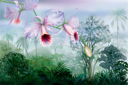 rainforest: Cattleya orchids on a background tropical rainforest. Vector illustration