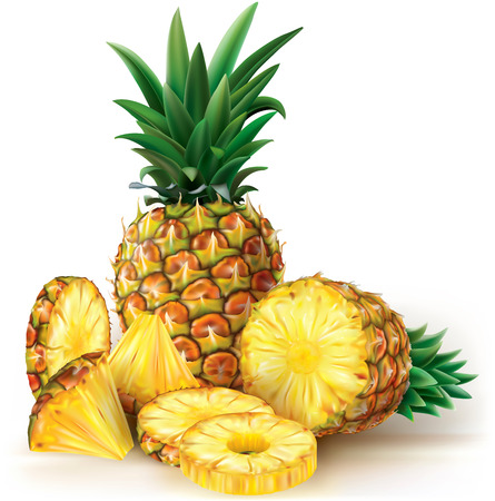 Pineapples with slices. Vector illustration