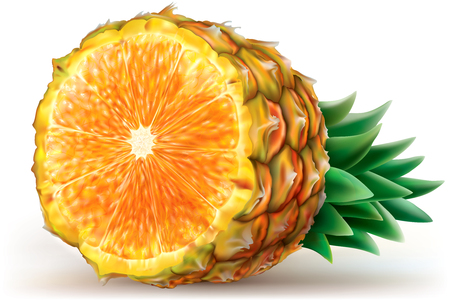 mixed fruit: Composition fruits of pineapple with orange