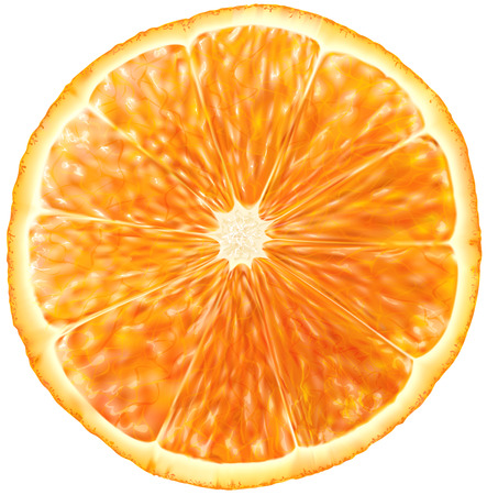 slice of orange fruit