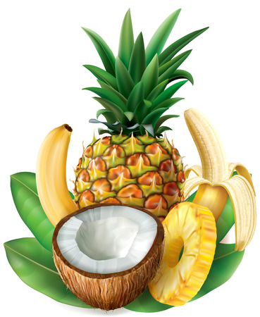 Half coconut,  pineapple and bananas. Vector