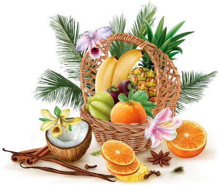 corbeille de fruits: Panier de fruits tropicaux et d'épices. Vector illustration Illustration