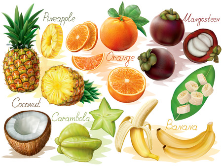 Tropical fruit set on white background. Vector illustration Illustration