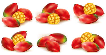 pulp: set of different  mango fruits illustration