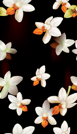 White orchids flowers on black background. Vector illustration