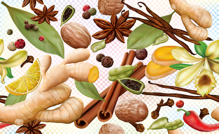 Aromatic different spices on a transparent background. Vector illustration