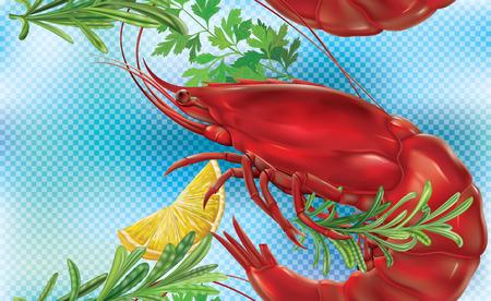 crustacea: Shrimp on a blue transparent background. Vector illustration