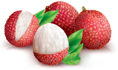 Lychees fruits and peeled lychee on white. Vector illustration